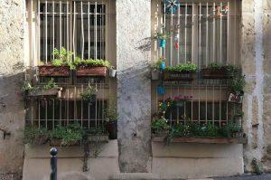 Améliorer le votre intimité avec une jardinière